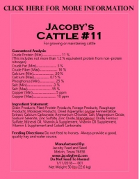 Jacoby's Cattle #11