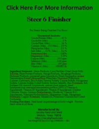Steer 6 Finisher
