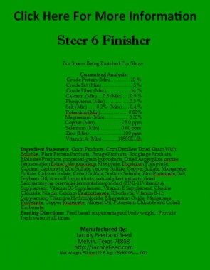 Steer 6 Finisher 1