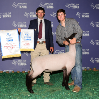 Dylan Chilcutt - Res Suffolk Ram - State Fair