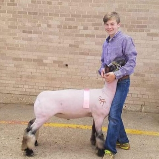 Heith lewis 4th place lamb state fair