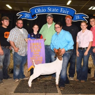Paige Stahl Ohio St. Fair