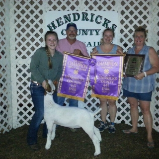 Shelby Mathis, Hendricks County Fair, Grand Champion Goat,