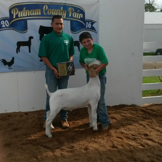 bryce bunnell, Putnam County Goat Show, Grand Champion Goat,