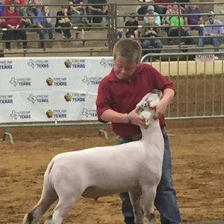cayhill isom 4th place class 5 state fair