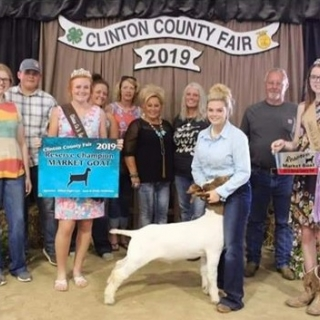 clinton co fair 2