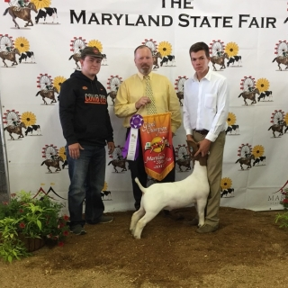 tate bittner maryland fair (2)